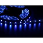 Светодиодная лента 3528  60 LED синяя 4.0-4.5 Lm/LED IP33